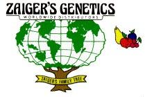 zaiger_logo