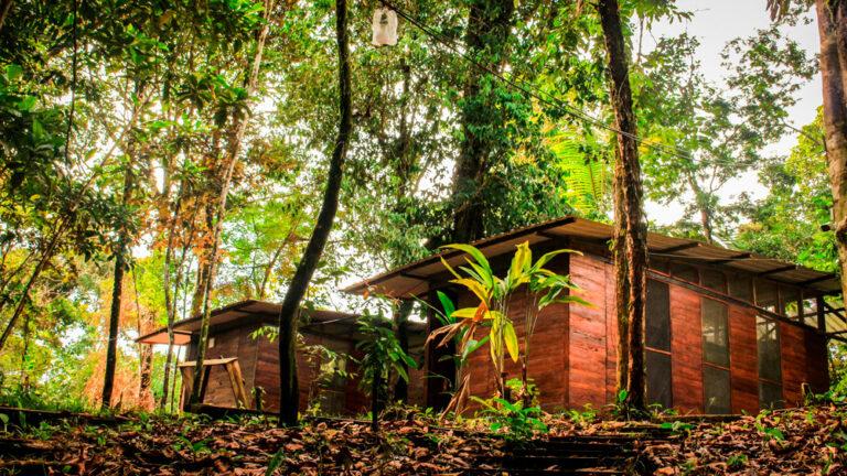 Pacifico Hostel aliado con LobbyPMS