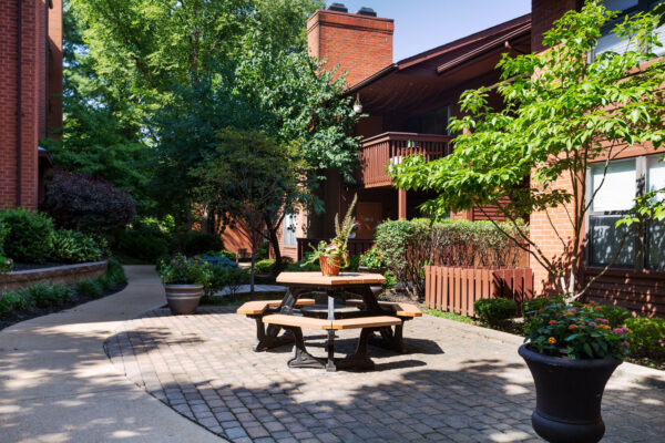 A courtyard with landscaping and sunlight at Chesterfield Village Apartments