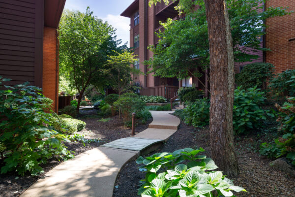 A shaded path to apartments at Chesterfield Village Apartments