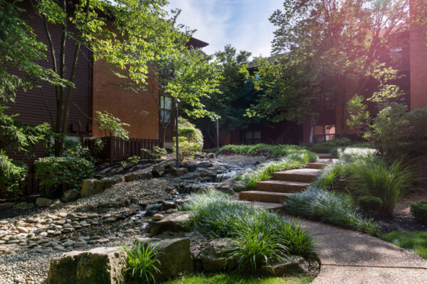 a lens flare with a babbling brook at Chesterfield Village Apartments