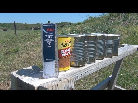 22LR vs Cans of Refried Beans