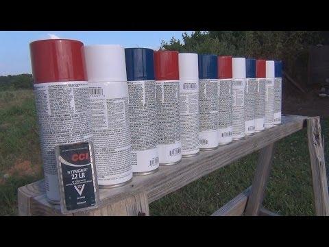 22LR vs Spray Paint Cans