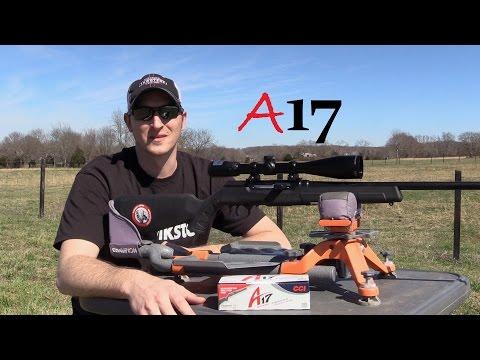 Savage A17 Rifle