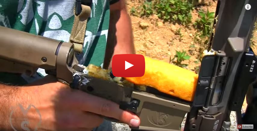 AR-15 Rifle vs Twinkies