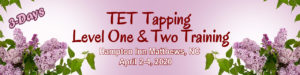 TET Tapping Level 1-2 Training from The EFT Academy and Jan Luther