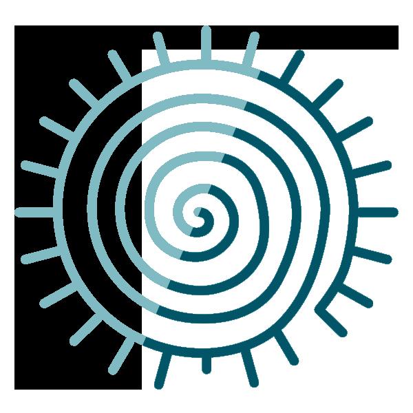 Circle Divide