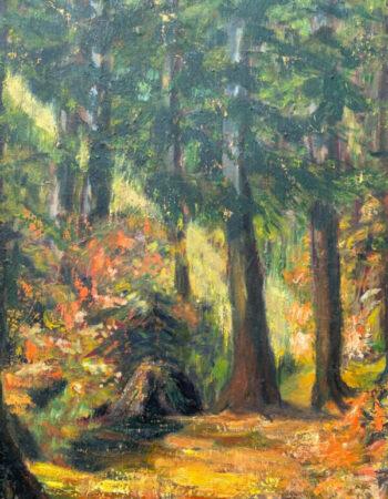 Coastal Forest in Fall