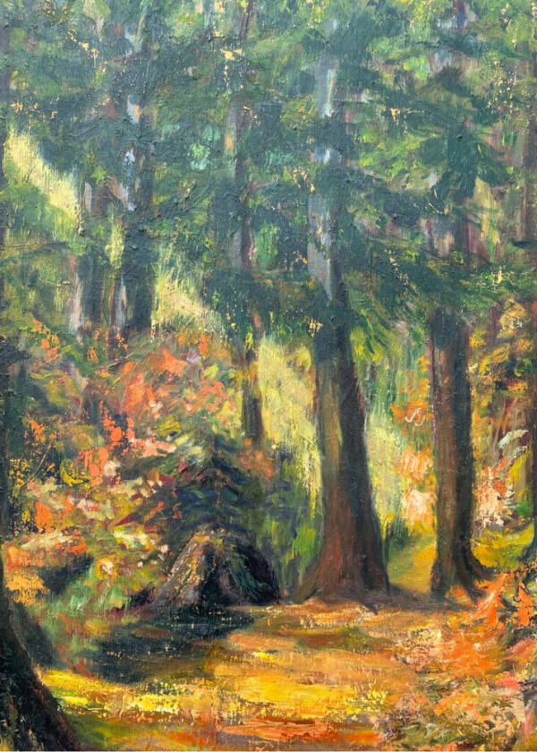 Hero Name-Coastal Forest in Fall_Tag-Nature_Collection-Fall