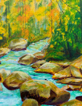 Forest River Rocks