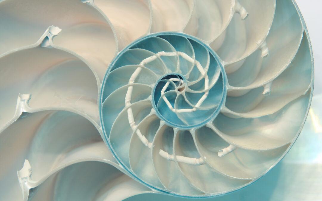 PTAB Adopts Nautilus Indefiniteness Standard
