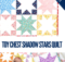 Toy Chest Shadow Stars Quilt Free Pattern
