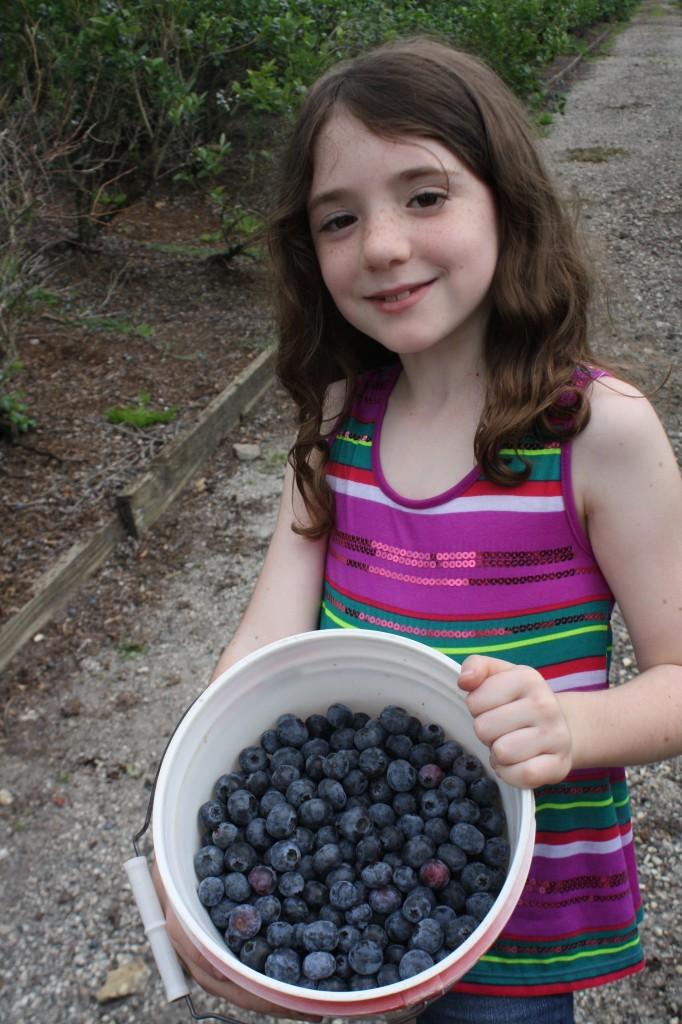 Emmalynn_blueberry