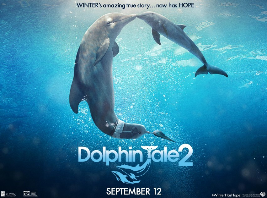 Dolphin Tale 2 2 Music Monday: Dolphin Tale 2    Gavin DeGraw You Got Me and Giveaway