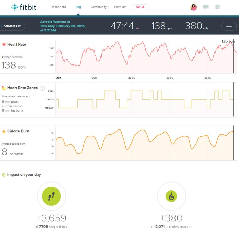 Fitbit activity log