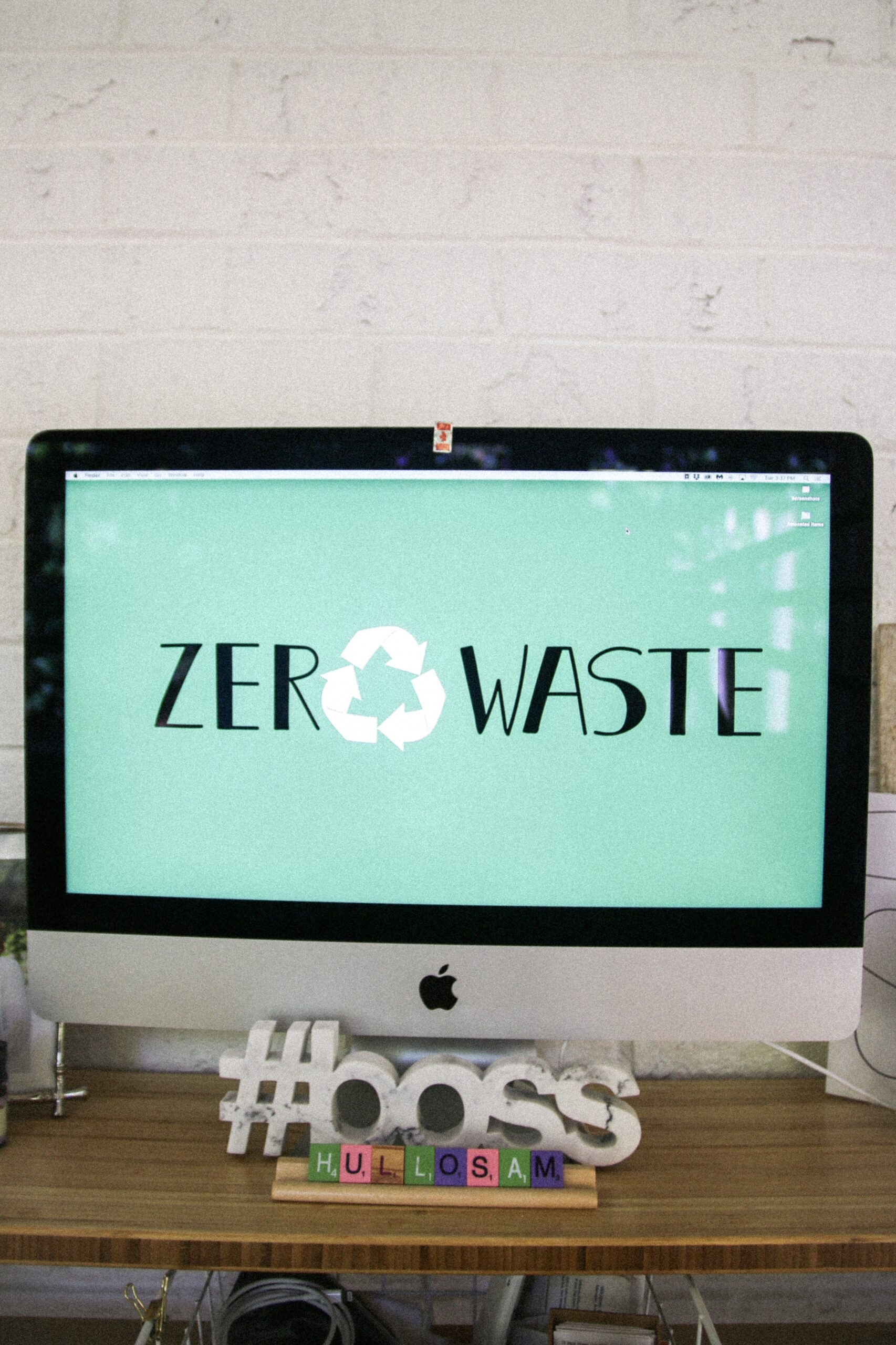 Updated Earth Day: Sustainable/Zero-Waste Faves