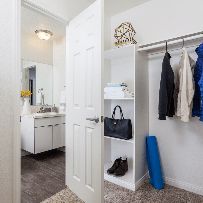 Carpeted walk-in closet
