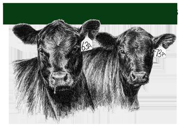 Wyoming Cattlemen's Association