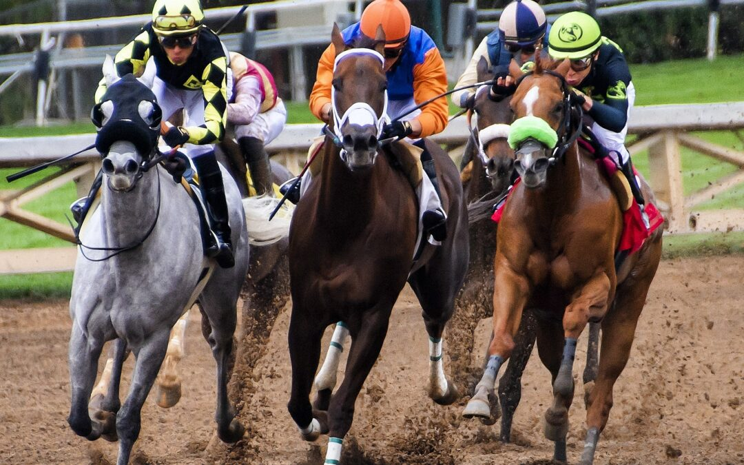 5 Tips for Betting on Horse Racing