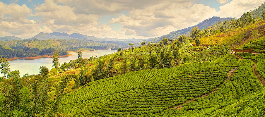 A view from the top of Nuwara Eliya hills in Srilanka. A lake is also visible.