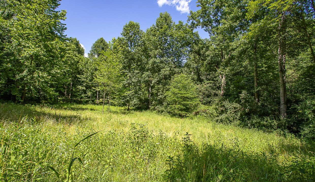 Land for Sale in Madison_06
