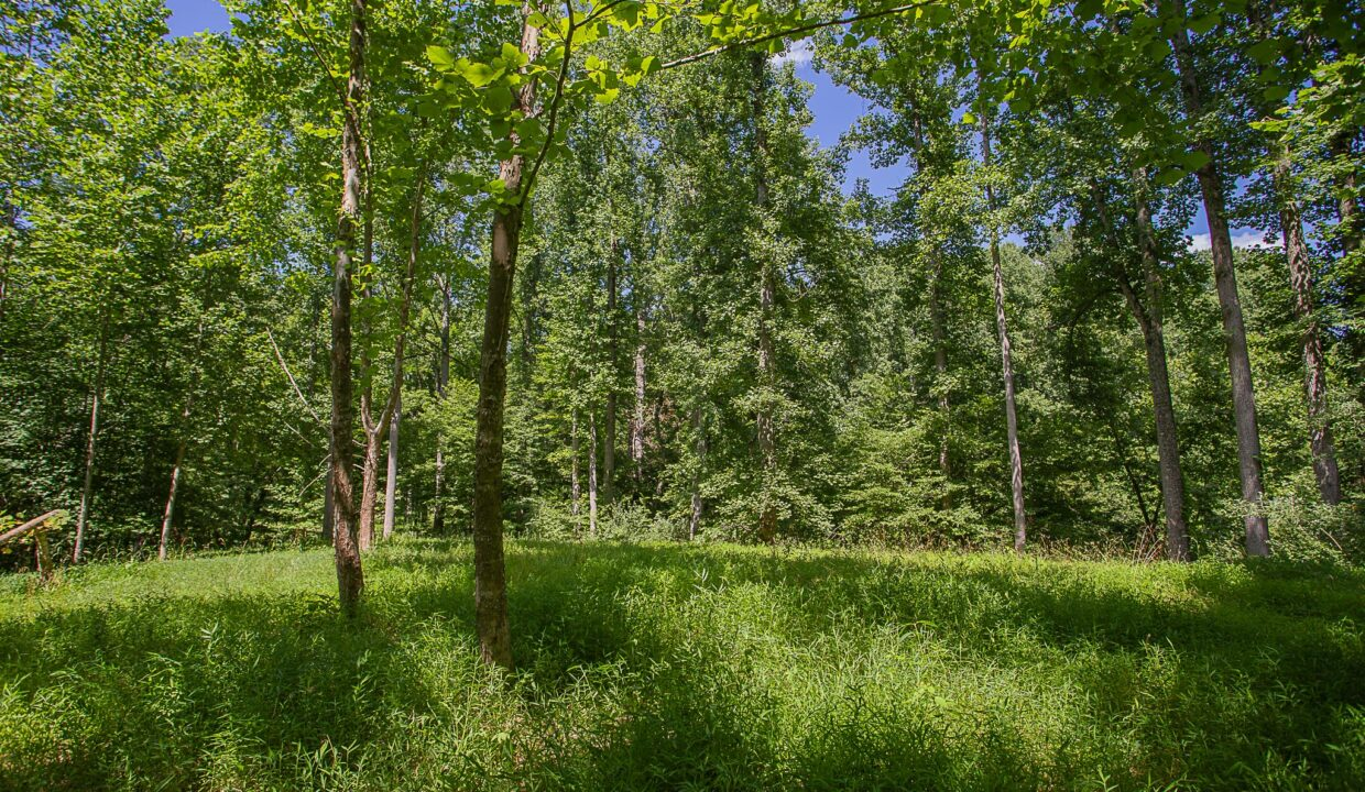 Land for Sale in Madison_10