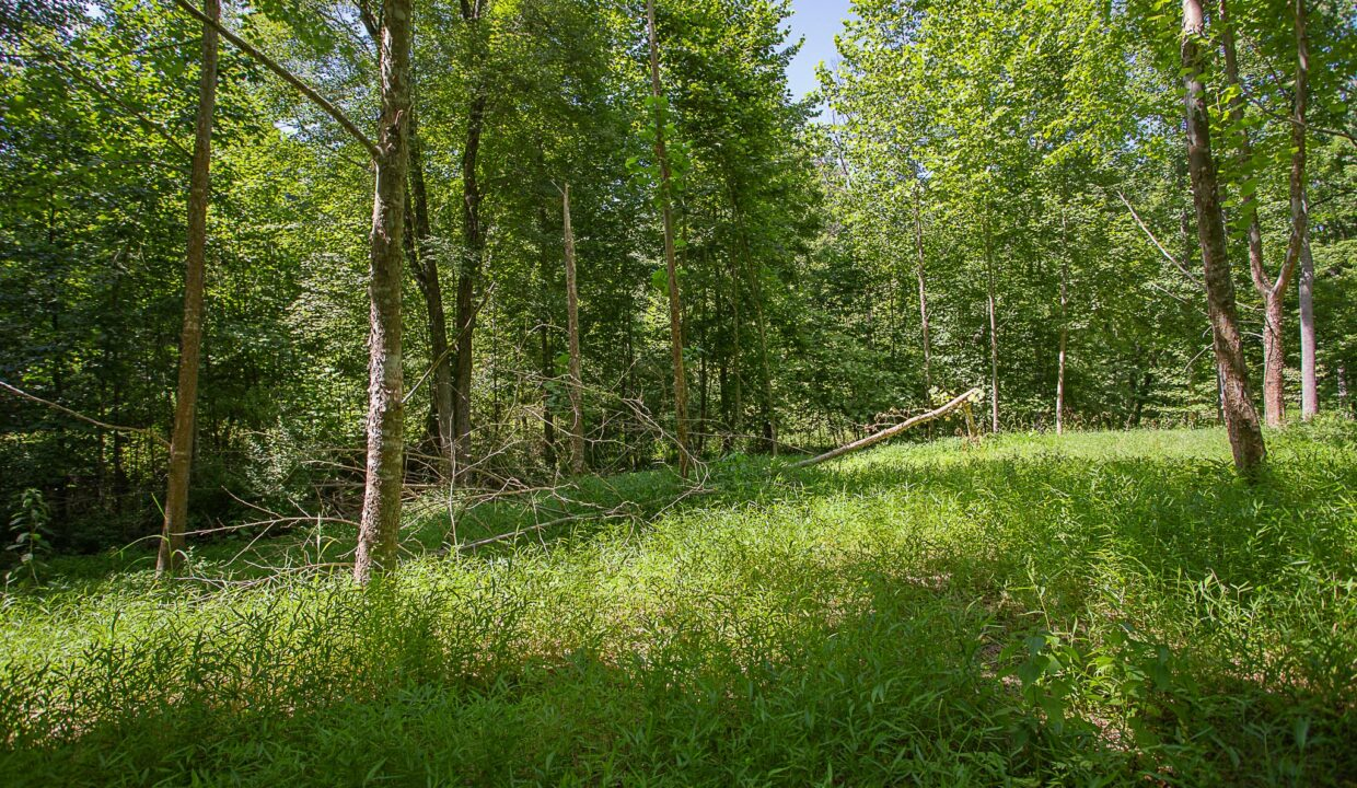 Land for Sale in Madison_11