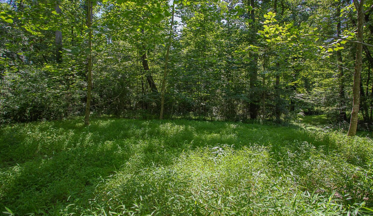 Land for Sale in Madison_15