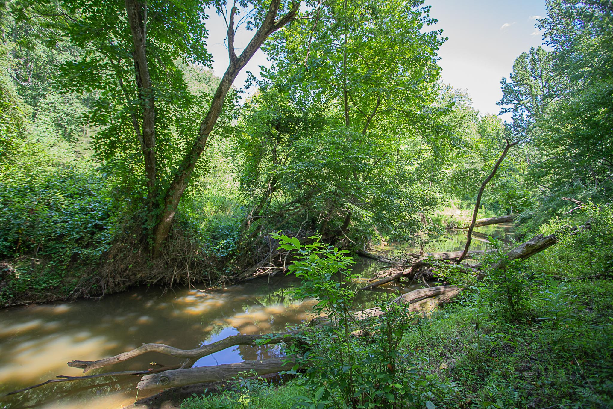 3 Acre Homesite in Madison County