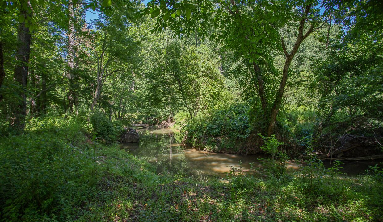 Land for Sale in Madison_24