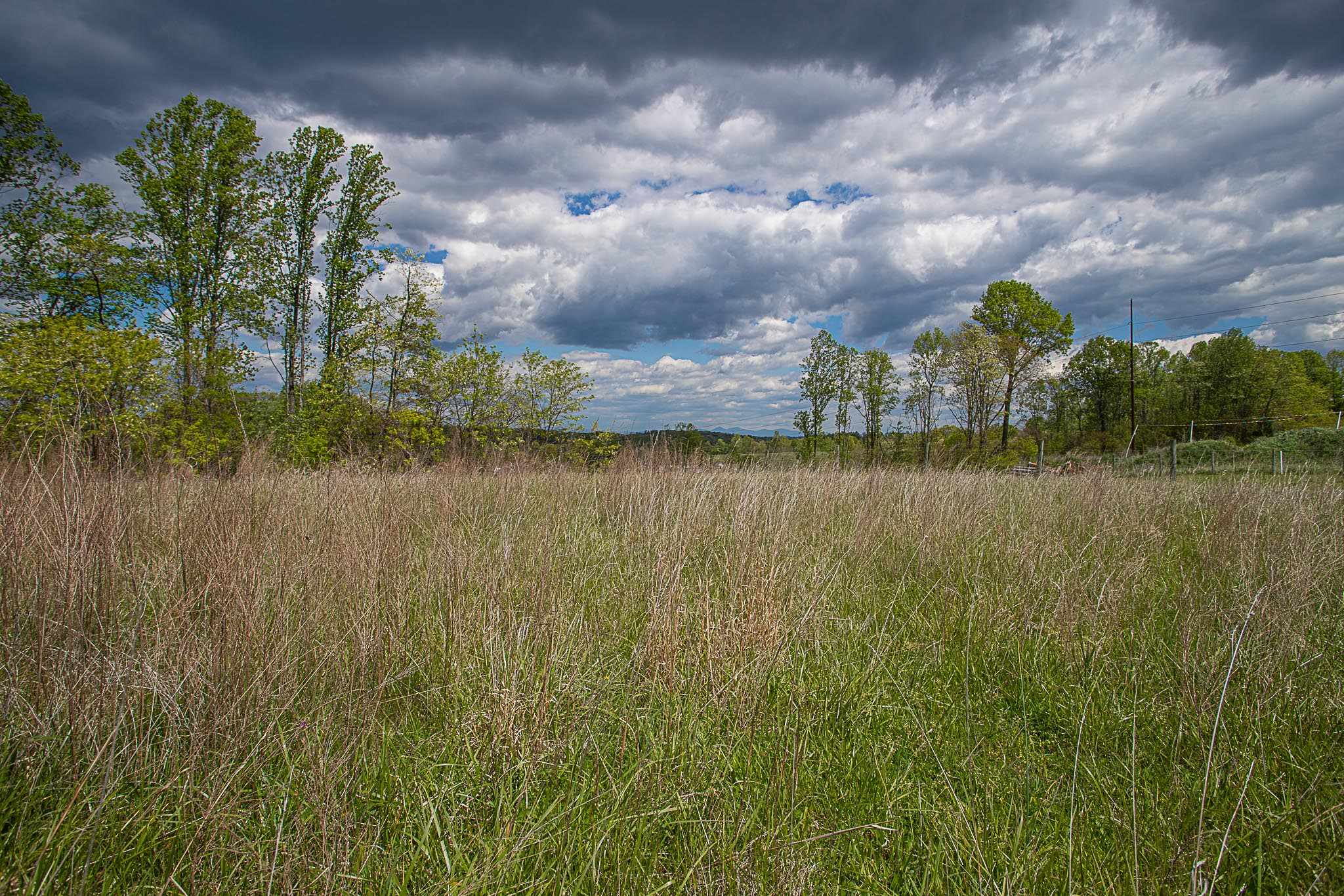 Land in Franklin County, Timber Ridge, Lot #15