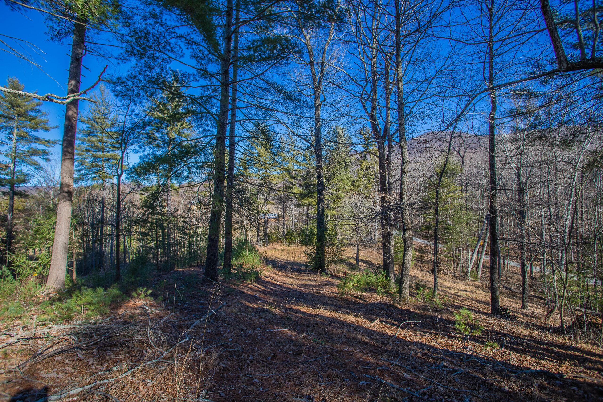 Land in Franklin County, Trails at Dillons Mill, Lot 12A