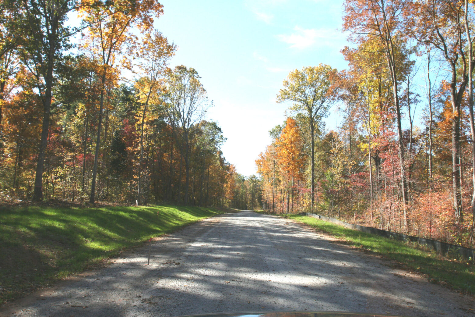 Land for Sale in Pamplin, VA