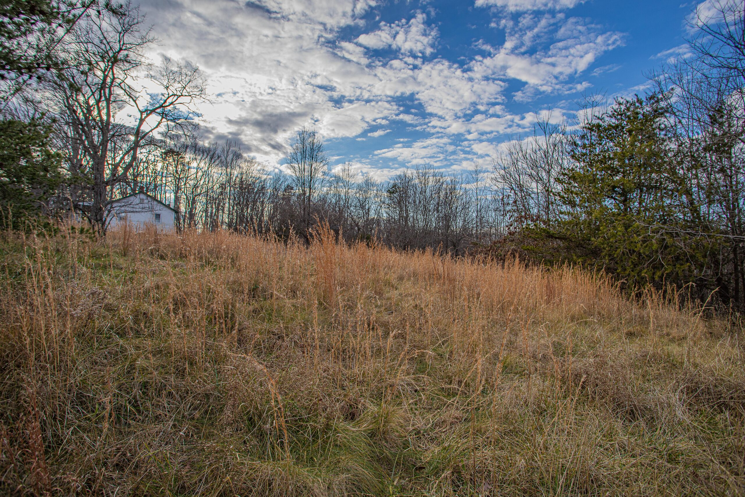 Appomattox Land for Sale, Oakville Road