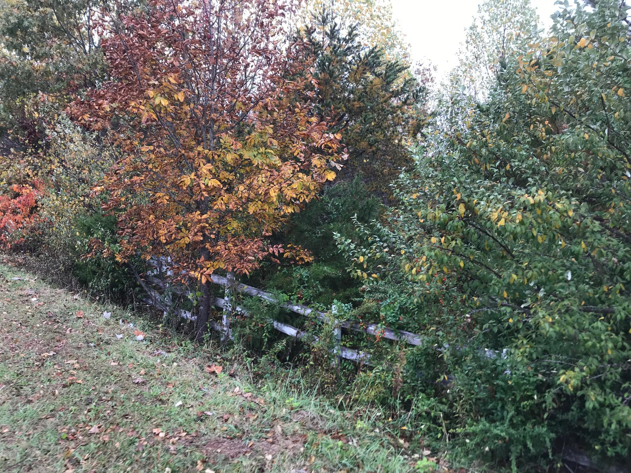 Pittsylvania County Land on Easome Road