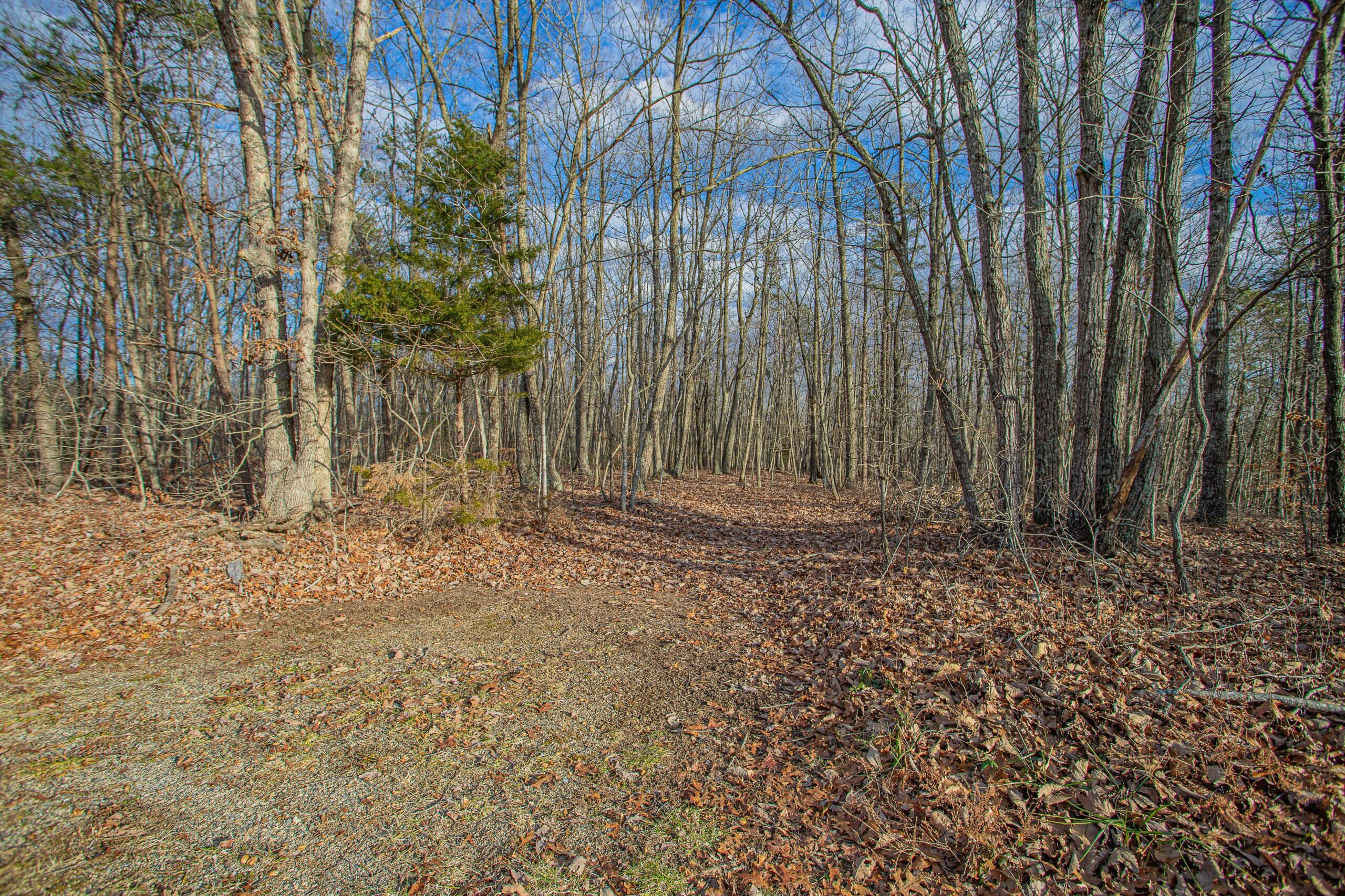 Multiple Lots Available in Appomattox County! Oakridge Road