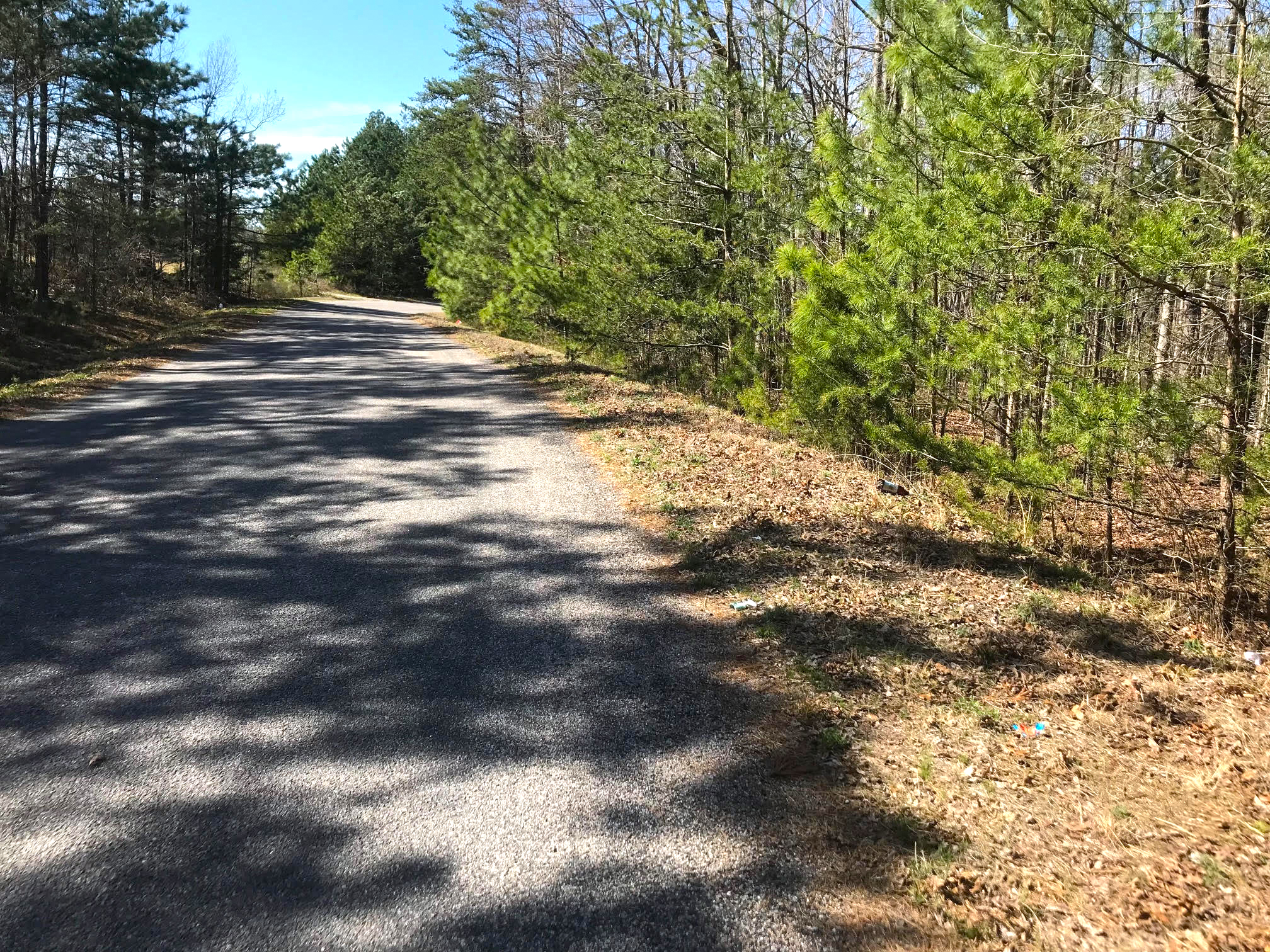 Rural 10 Acres in Nottoway County, Dogwood Road