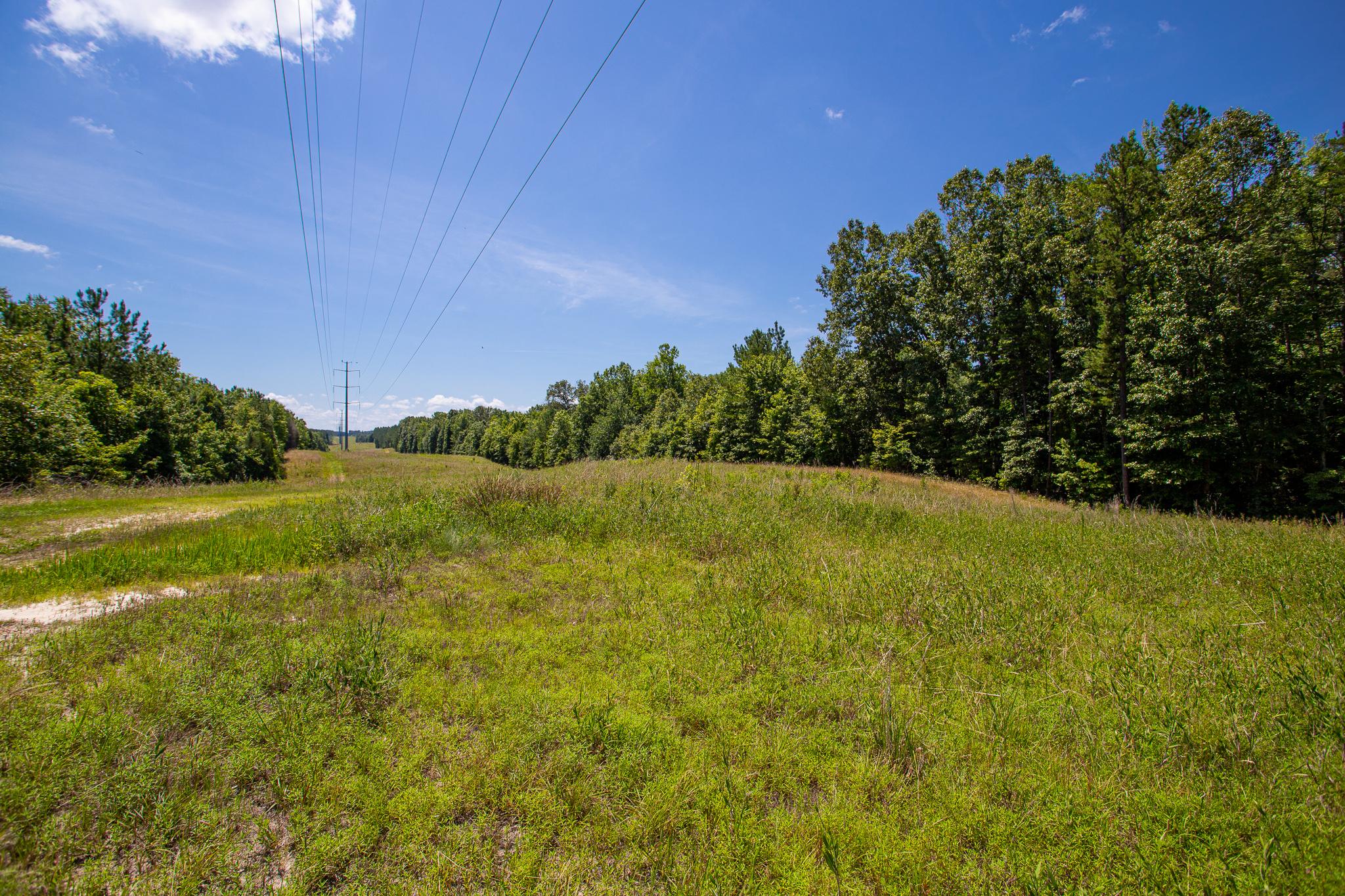 Beautiful Acreage in Mecklenburg County on Hendrick-Crow Road