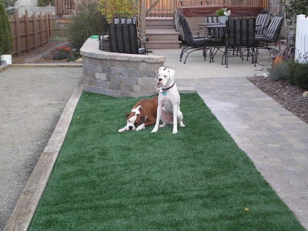 Synthetic Turf   Young's Landscape Management, Inc.