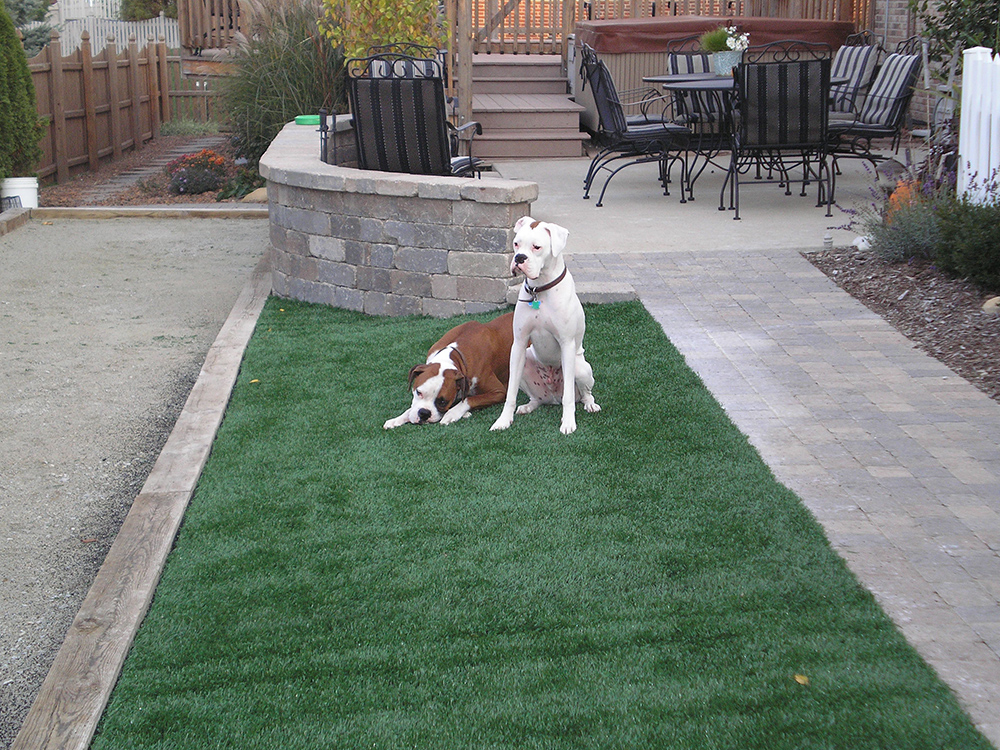 Synthetic Turf | Young's Landscape Management, Inc.