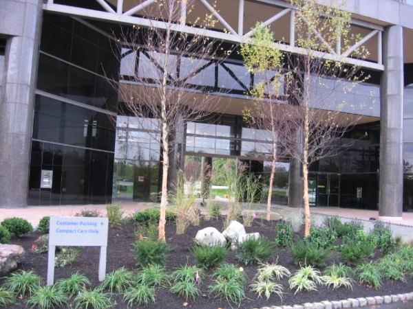 Commercial Landscape Management   Youngs Landscape Management Inc