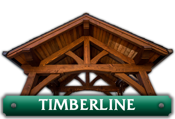 Timberline pavilion kit featuring a pair of beautiful king post trusses designed by timber pavilion kit company Framework Plus in Estacada, OR