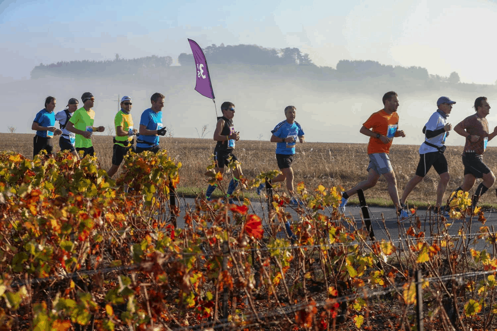 From Vineyards to Streets: Run In Reims 2018