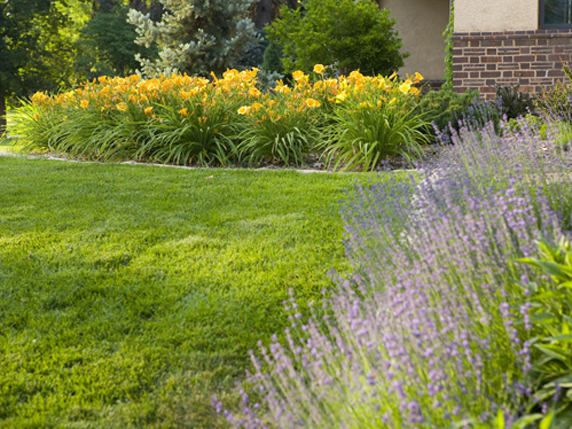 denver landscape architects