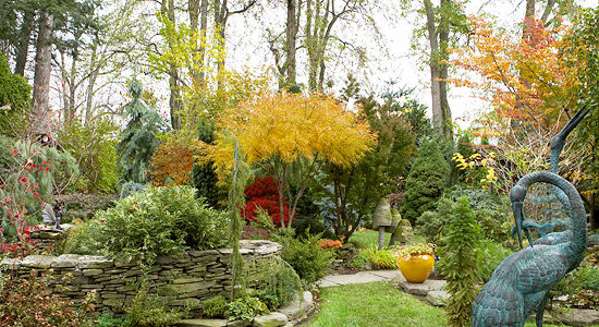 Prepare Your Colorado Garden for Winter