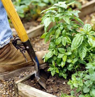 colorado garden maintenance