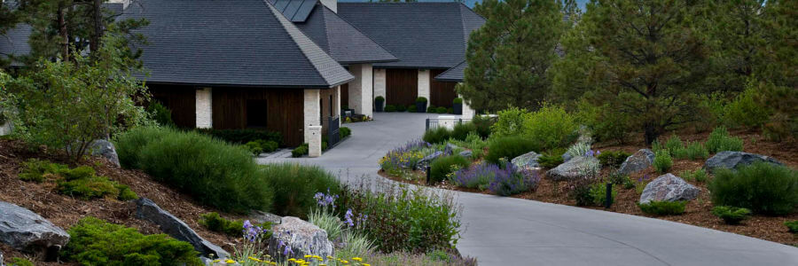 Healthy trees can mean a healthy increase in property value.