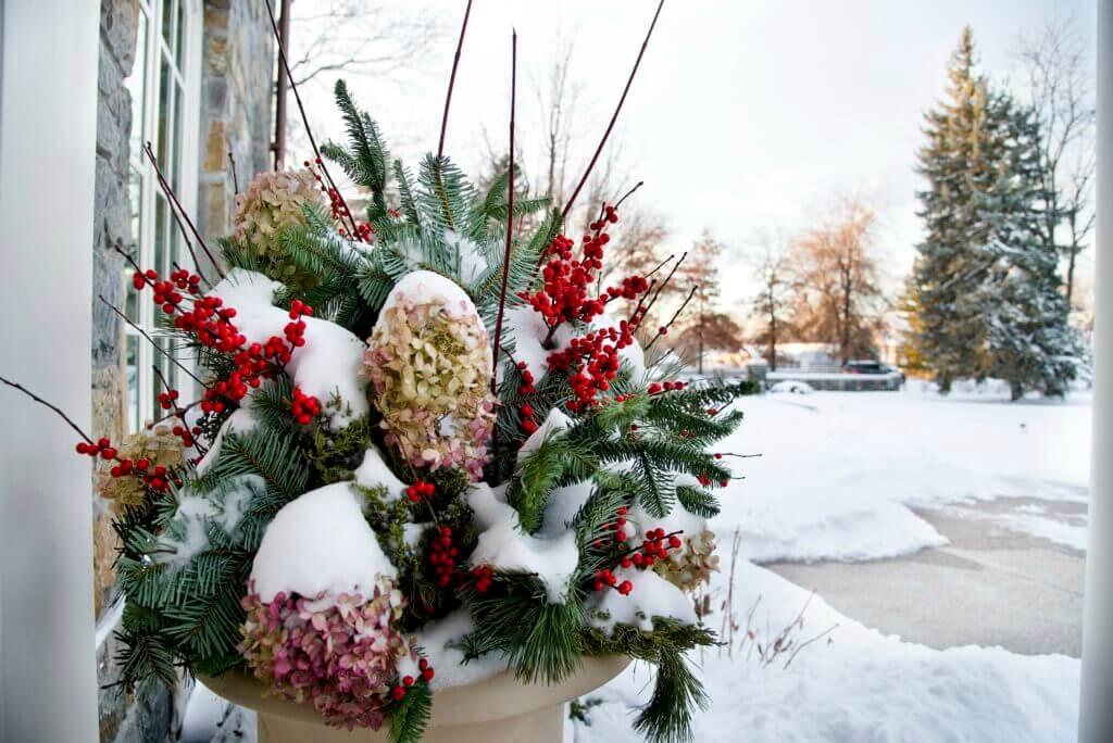 prepare landscapes for winter