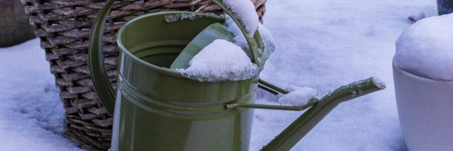 Top Recommendations for Winter Landscape Care