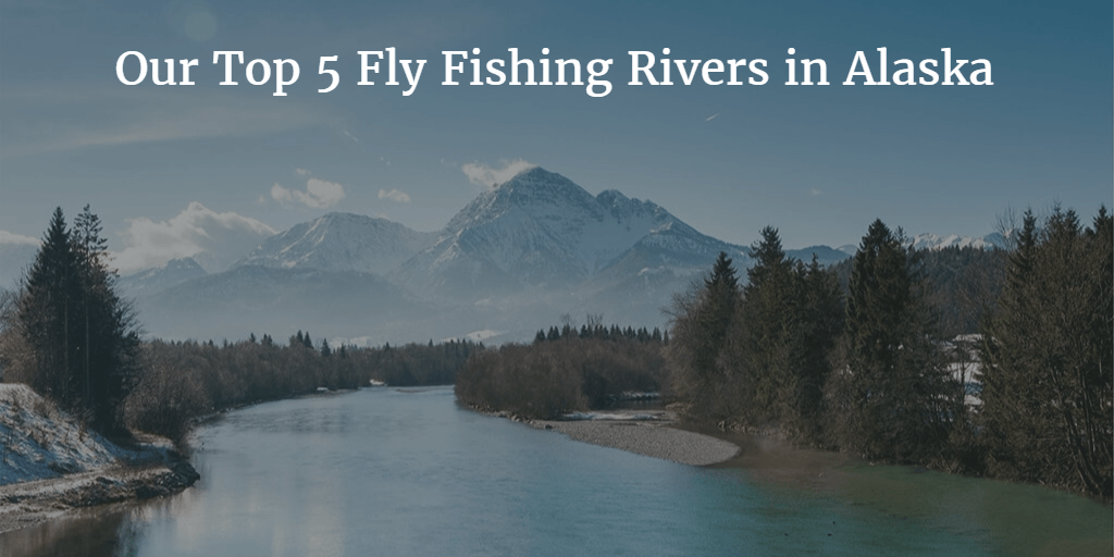 Top 5 Fly Fishing Rivers in Alaska